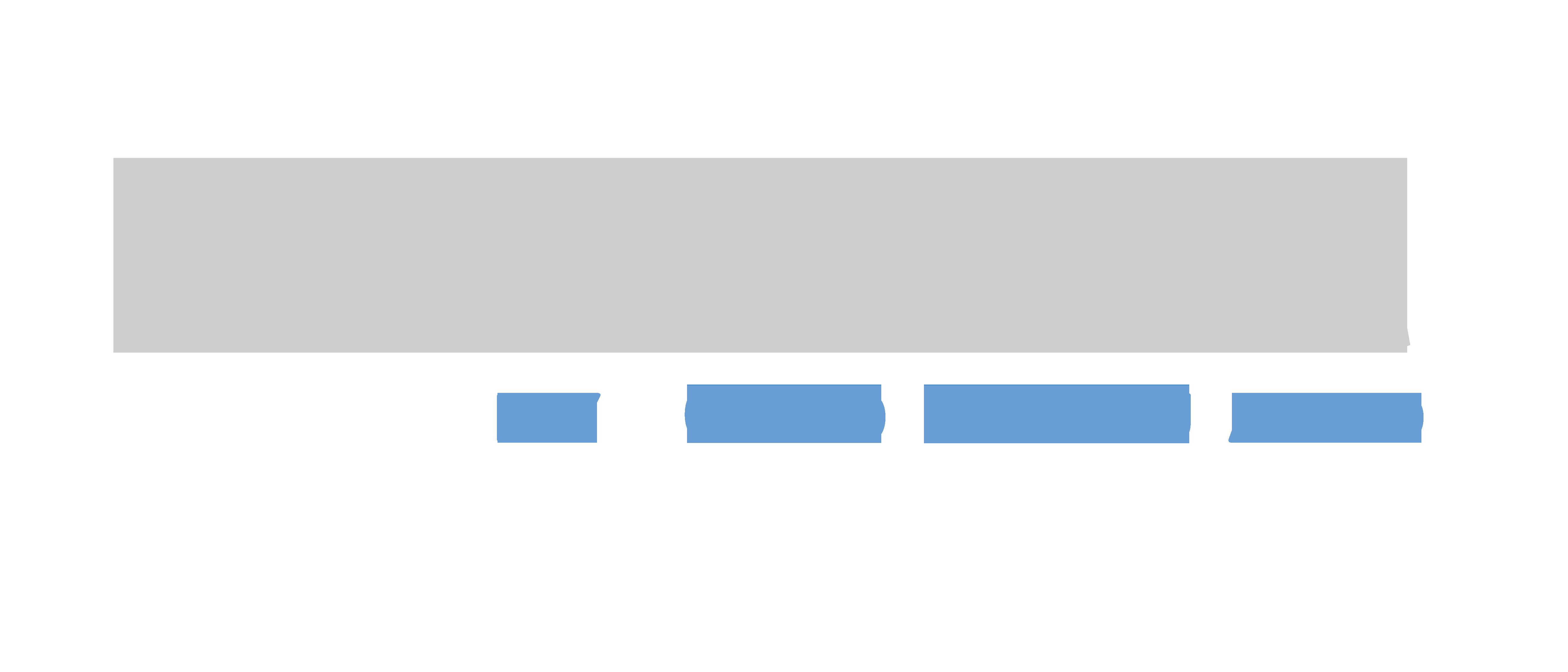 Pro Gauntlet